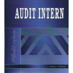 Audit Intern