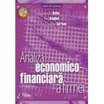 Analiza economico-financiară a firmei - Vasile Robu