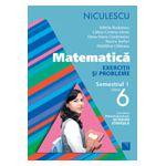 Matematică. Exerciţii şi probleme pentru clasa a VI-a, semestrul I