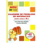 Culegere de probleme de matematica pentru clasa a VI-a - Puisor
