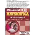 Bacalaureat 2017 Matematica - Filiera tehnologica - Exercitii recapitulative - Teste(maro)
