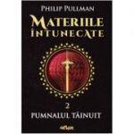Materiile intunecate, volumul 2. Pumnalul tainuit
