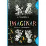 Imaginar | paperback