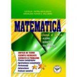 Matematica - clasa a IX-a - Algebra. Geometrie. Trigonometrie