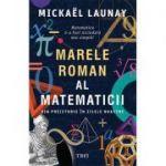 Marele roman al matematicii. Din preistorie în zilele noastre