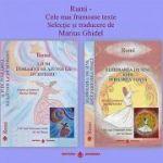 Pachet 2 carti Rumi. Cele mai frumoase texte. Selectie si traducere Marius Ghidel - Jalal al-Din Rumi