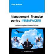 Management financiar pentru miniafaceri