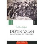 DESTIN VALAH IN ILUSTRATII SI 101 TEXTICULETE