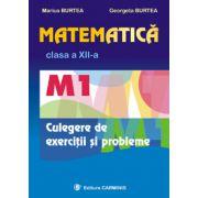 Matematica  M1  Clasa a XII-a. Culegere de exercitii si probleme