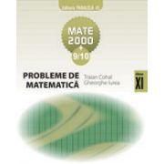 PROBLEME DE MATEMATICA PENTRU CLASA A 11-A