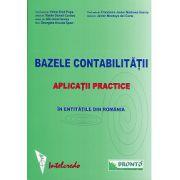 Bazele contabilitatii - Aplicatii practice in entitatile din Romania