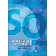Inteligenta Spirituala SQ. Instanta superioara a inteligentei