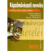 EDUCATIE PLASTICA  limba maghiara - clasa a VIII-a