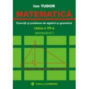 Matematica. Exercitii si probleme de algebra si geometrie. Clasa a VII-a. Semestrul I