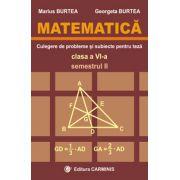 Matematica. Clasa a VI-a. Culegere de probleme si subiecte pentru teze. Semestrul II