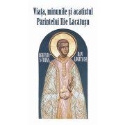 Viata, minunile si acatistul Parintelui Ilie Lacatusu