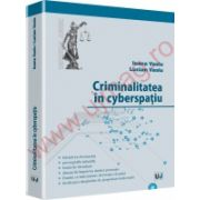 Criminalitatea in cyberspatiu