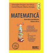 Matematica. Exercitii si probleme. Clasa a VII-a, semestrul II 2011-2012