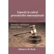 Expertii in cadrul procedurilor internationale