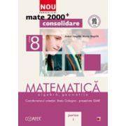 Mate 2013 Consolidare MATEMATICA. ALGEBRA, GEOMETRIE. CLASA A VIII-A. PARTEA I