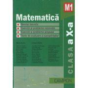 Matematica M1 clasa a X-a - Culegere de probleme