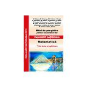 Evaluare nationala 2013  Matematica. 70 Teste pregatitoare