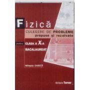Bacalaureat 2013 Fizica Culegere de probleme propuse si rezolvate pt clasa a X-a