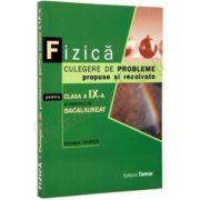 Bacalaureat 2013 Fizica Culegere de probleme propuse si rezolvate pt clasa a IX-a