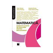bacalaureat 2013 Matematica  exercitii si teste de evaluare