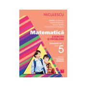 Matematică  Exerciţii şi probleme pentru clasa a V-a, semestrul I