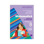 Matematică Exerciţii şi probleme pentru clasa a VIII-a, semestrul I