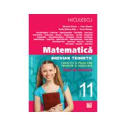 Matematică clasa a XI-a - Breviar teoretic cu exerciţii şi probleme propuse şi rezolvate - teste de evaluare
