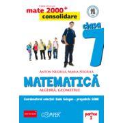 Mate 2013 - 2014 Consolidare - ALGEBRA, GEOMETRIE. CLASA A VII-A. PARTEA I