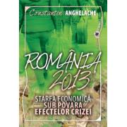 România 2013. Starea economică sub povara efectelor crizei