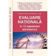 EVALUARE NATIONALA Matematica  2014 in 12 de saptamani