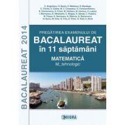 BACALAUREAT 2014  Matematica  M_tehnologic - Pregatirea examenului in 11 de saptamani.