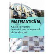 Bacalaureat 2015 Matematica M1 Ghid de pregatire intensiva pentru bacalaureat