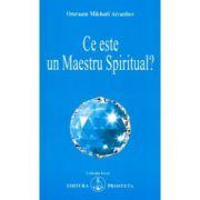 Ce este un Maestru Spiritual? - O. M. Aivanhov