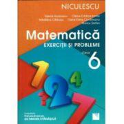 Matematica 2017 - Exercitii si Probleme pentru clasa a VI-a