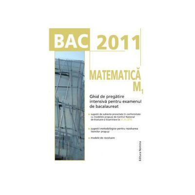 Bacalaureat 2011. Matematica M1