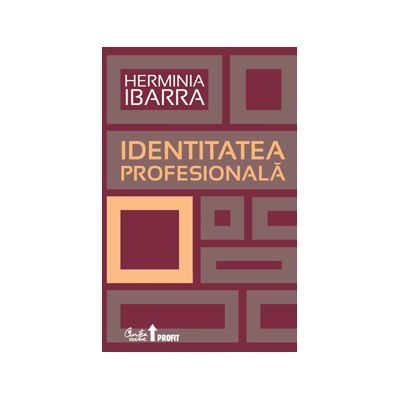 Identitatea profesională. Strategii necovenţionale pentru redefinirea carierei