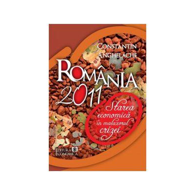 România 2011. Starea economică în malaxorul crizei