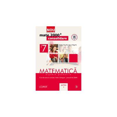Mate 2013 Consolidare MATEMATICA. ALGEBRA, GEOMETRIE. CLASA A VII-A. PARTEA I