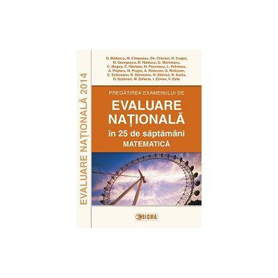 EVALUARE NATIONALA 2014  MATEMATICA -  Pregatirea examenului  in 25 de saptamani