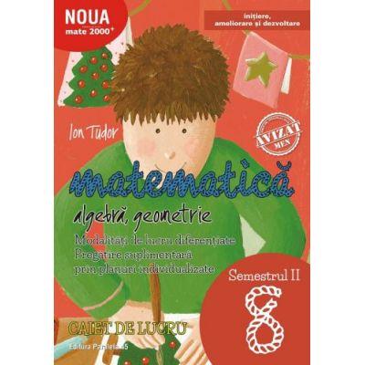 Matematica 2017 - 2018 - Initiere - Algebra, Geometrie - Clasa A VIII-A - Caiet de lucru - Semestrul II
