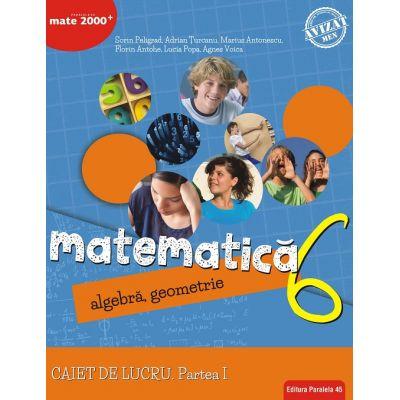 Matematica 2018 - 2019 Consolidare - Algebra, Geometrie - Clasa A VI-A - Caiet de lucru - Semestrul I