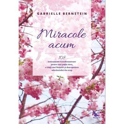 Miracole acum. 108 instrumente transformatoare pentru mai puţin stres, o viaţă mai liniştită şi descoperirea adevăratului tău scop