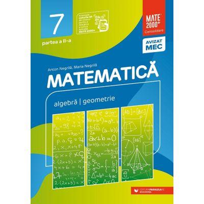 Matematica 2020 - 2021 Consolidare - Algebra - Geometrie - Clasa A VII-A - Semestrul 2 - Avizat M. E. C.